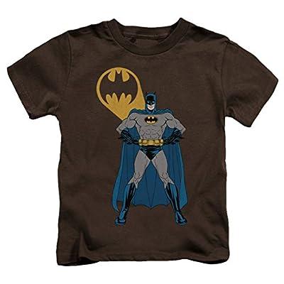 DC Batman Arms Akimbo Bats Juvy T-Shirt