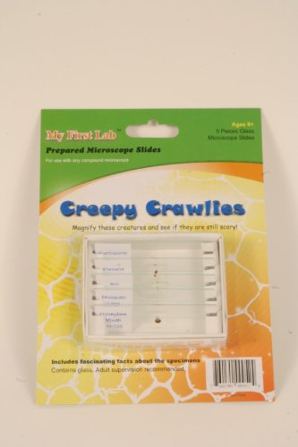 1 X Creepy Crawlies 5pc Slide Set