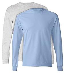 Hanes, 5586, Men\'s, Tagless Long Sleeve Tee, 1 Ash + 1 Light Blue, Small