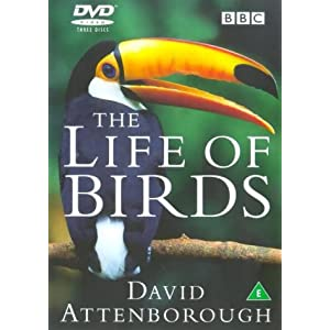 David Attenborough's Life Of Birds [DVD] [1998]