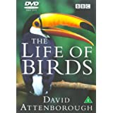 The Life of Birds [DVD] [1998]by David Attenborough