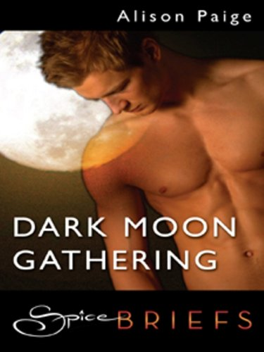 Alison Paige - Dark Moon Gathering