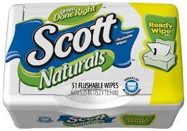 Scott Naturals with Aloe Vera Flushable Moist Wipes (2 Pack) (Scott Natural Wipes compare prices)