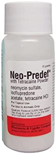 Neo-Predef with Tetracaine - 15 gm