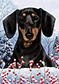 Dachshund Black/Tan by Tamara Burnett Winter Berries Garden Dog Breed Flag 12'' x 18