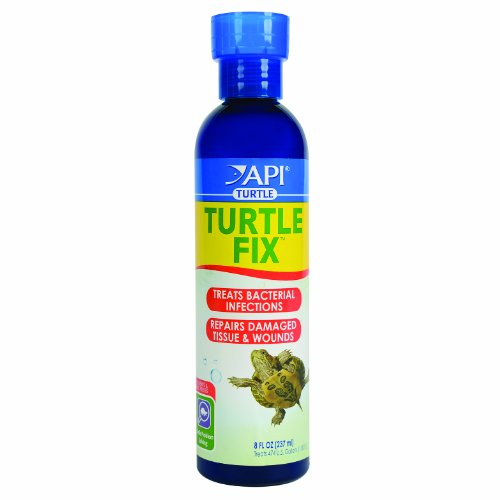 api-turtle-fix-natural-antibacterial-remedy-disease-infections-treatments-8oz
