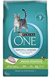 Purina ONE Dry Cat Food, Indoor Advantage, 16-Pound Bag, Pack of 1