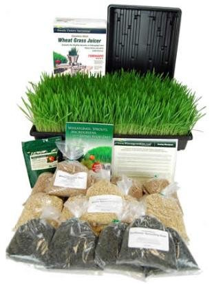 Wheatgrass Manual Juicer front-313075