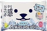 Amazon.co.jpHO-220 ひんやりふくだけシャワー 大判の汗ふきシート(10枚入り)