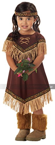 Lil' Indian Princess Girl's Costume, Large, One Color