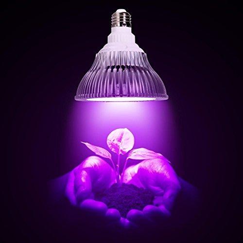 Achetez Gl01 Pour Lampe Plante Eclairage PlantesOxyled eHYDI2WE9b