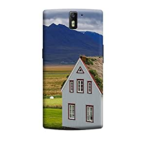 Ebby Premium Printed Mobile Back Case Cover With Full protection For OnePlus One (Designer Case)