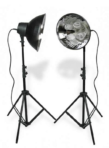 Micansu QD440 Quad 2 Light Studio Lighting kit 40w x 4 bulbs Continuous for digital and video