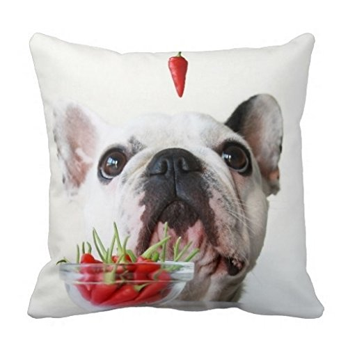 Miss Gaga Different French Bulldog Looking At A Red Pepper Pillow Case (Pottery Barn Bulldog Pillow compare prices)