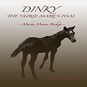 Dinky Audiobook