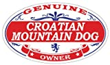 Croatian Mountain Dog Oval Magnet