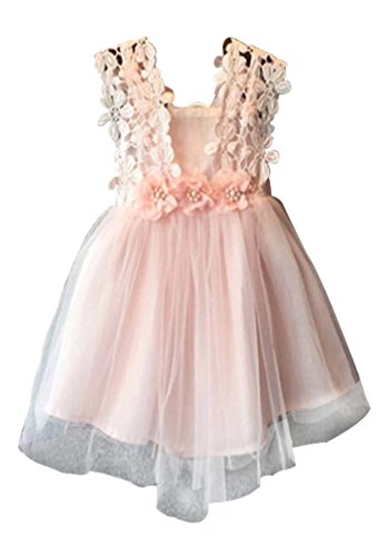 Baby Girls Sleeveless Lace Wedding Vintage Birthday Party Princess Flower Dress 2T Pink