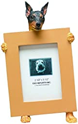 Miniature Pinscher Picture Frame Holds Your Favorite 2.5 by 3.5 Inch Photo, Hand Painted Realistic Looking Miniature Pinscher Stands 6 Inches Tall Holding Beautifully Crafted Frame, Unique and Special Miniature Pinscher Gifts for Miniature Pinscher Owners