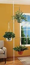 3 Arm Plant Pole