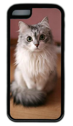 Lovely Cat Diy Rubber Black Iphone 5C Case Perfect By Custom Service