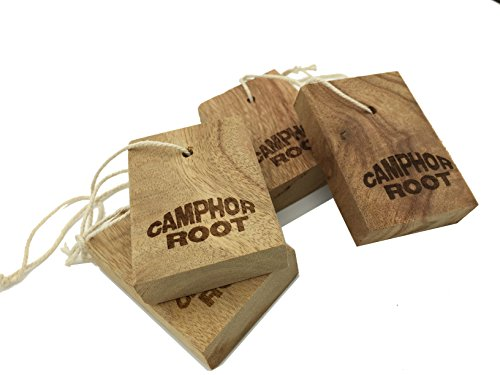 Clothes moths Protection - Camphcra Fresh Root Blocks For Closet and Drawer Storage - 4 Blocks (Moth Repellent Spray compare prices)