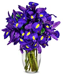 From You Flowers - Stunning Blue Iris - 10 Stems (Free Vase Included)