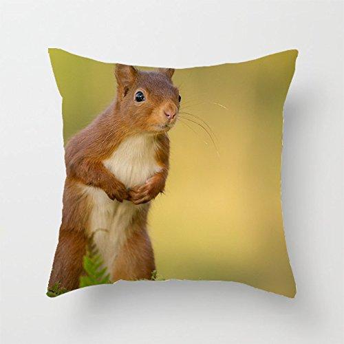 yinggouen-cute-animal-decorar-para-un-sofa-funda-de-almohada-cojin-45-x-45-cm
