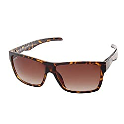 Funky Boys Wayfarer Sunglasses (Tortoise) (SOC-FB-3019-C4)