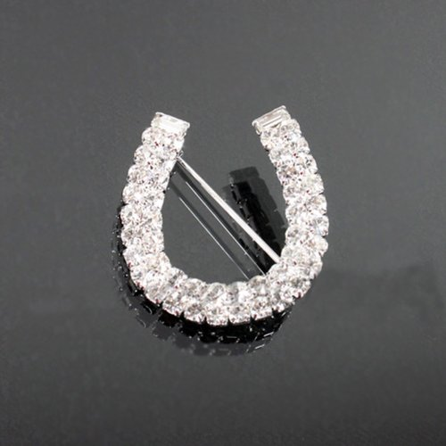 Rhinestone Horseshoe Fashion Brooch Bh6100-bc196