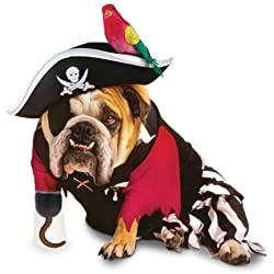 Paper Magic Group Zelda Pirate Pet Costume