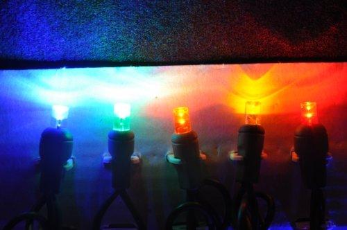 Multi (Red, Orange, Amber, Blue, Green) 12-Volt Wide Angle Led Light String