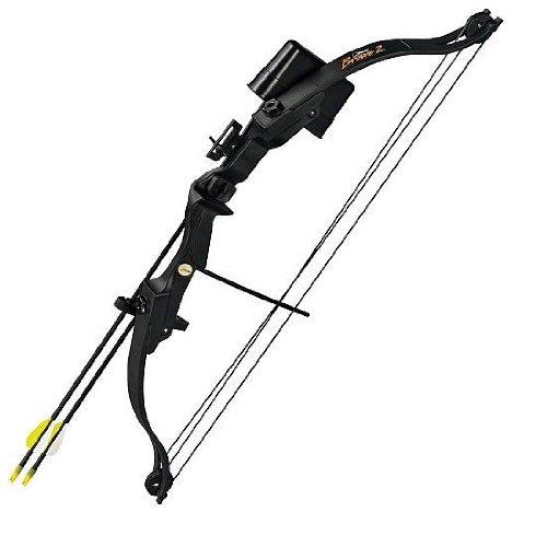 Bear Archery Brave 2 Bow Set
