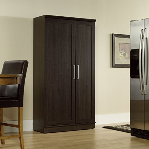 Sauder Double Door Storage Cabinet, Large, Dakota Oak (Sauder Pantry Cabinet compare prices)