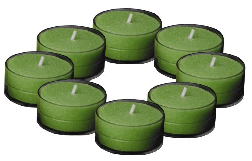 Root Scented Tealight Candles, Winter Balsam, Box of 8