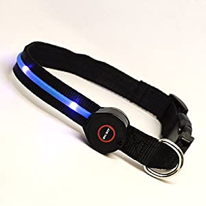 Flashing Safety Dog Collar with LED Lights, Multi-Function with POM Buckle from PFPTM