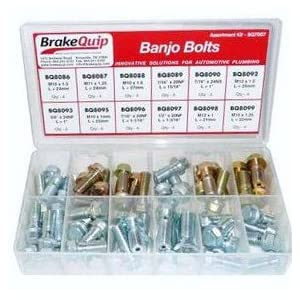 Amazon.com: BrakeQuip Banjo Bolt Assortment Kit: Automotive