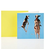 Pogo Cows Blank Greetings Card