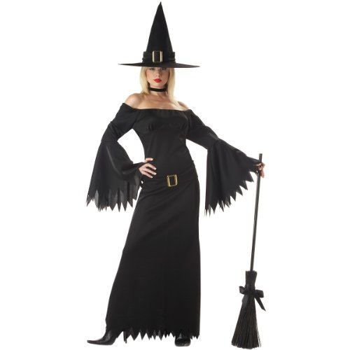 Elegant Witch Costume - Medium - Dress Size 8-10