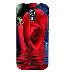 ColourCraft Lovely Rose Design Back Case Cover for MICROMAX CANVAS MAGNUS A117