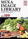 MIXA IMAGE LIBRARY Vol.109 フルーツと野菜