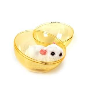 Ballrunner - Hamster In A Ball