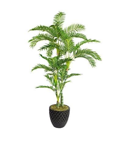 Laura Ashley 78 Palm Tree in a 16 Fiberstone Planter