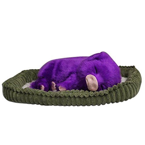 Perfect Petzzz Huggable Purple Piglet