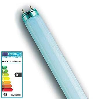 Leuchtstofflampe L 36 Watt 830 warmweiß - Osram