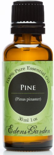 Pine 100% Pure Therapeutic Grade Essential Oil- 30 Ml