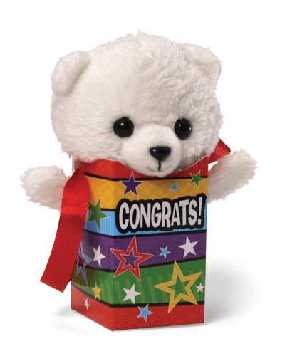 Gund Greetings PookiePocket Bear - Congrats! White
