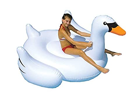 Swan Float Amazon Swan Inflatable Float Toy