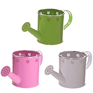 Metal Watering Can Planter With Flower Fretwork 14cm