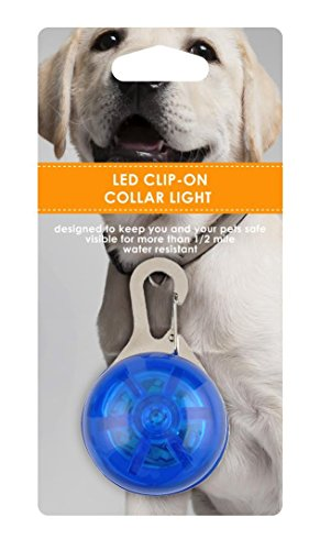 Clip-on-Dog-Collar-LED-Lights-designed-by-Friends-Forever
