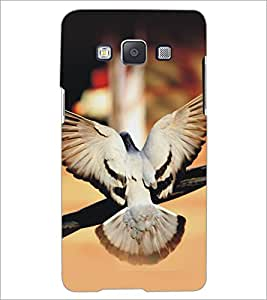 PrintDhaba Piegon D-5153 Back Case Cover for SAMSUNG GALAXY A5 (Multi-Coloured)